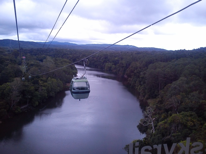 skyrail rainforest cableway, barron river, rainforest gondolas, things to do in cairns, how to get to kuranda