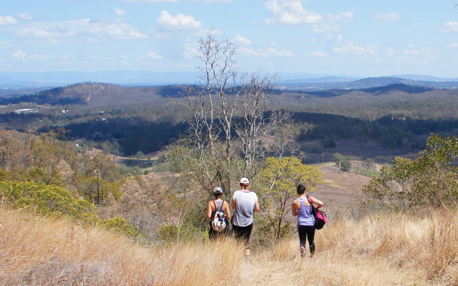 South D'Aguilar National Park has many forest and fire trails to explore