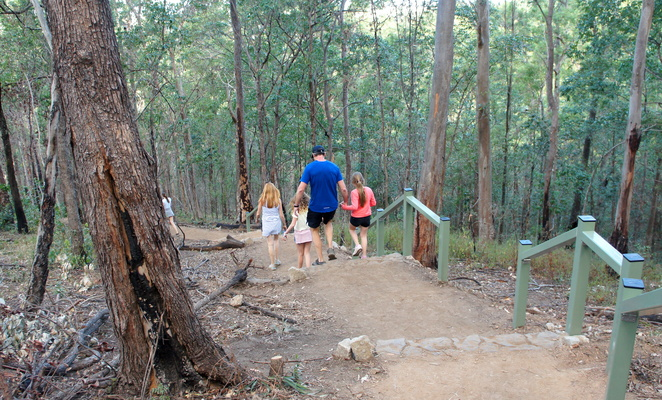 Active kids will enjoy the Spotted Gum Trail from the botanic gardens to the summit of Mt Coot-tha