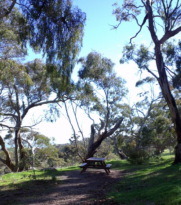 Spring Gully Conservation Park, Spring Gully Picnic, Clare Valley Activities