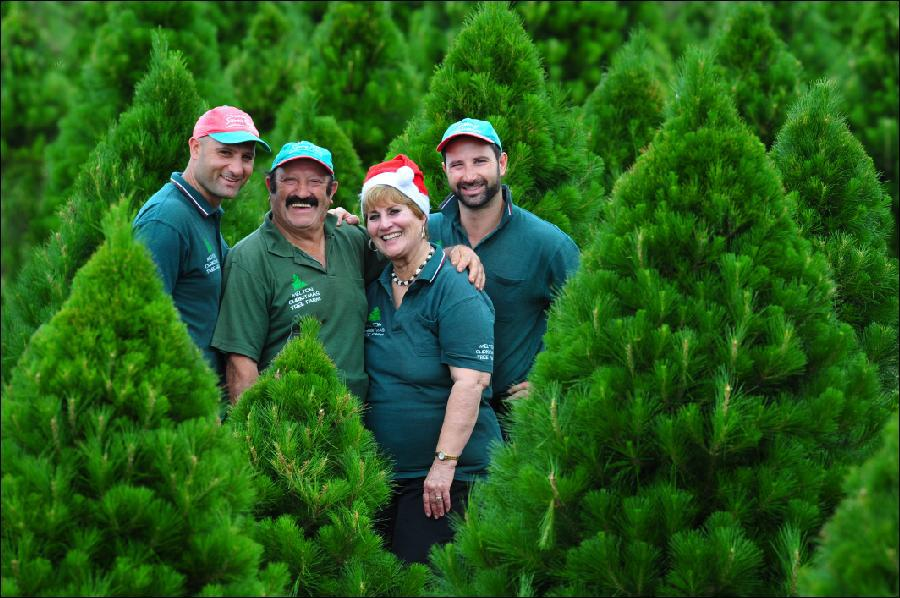 Melbourne Christmas Tree Farm family. large image - Christmas Tree Farms In Victoria - Melbourne