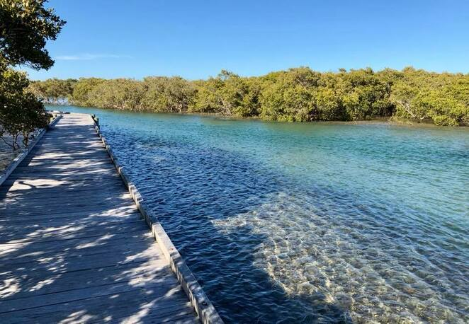 The 1Km Urunga Boardwalk passes a variety of habitat on its way to the distant surf beach