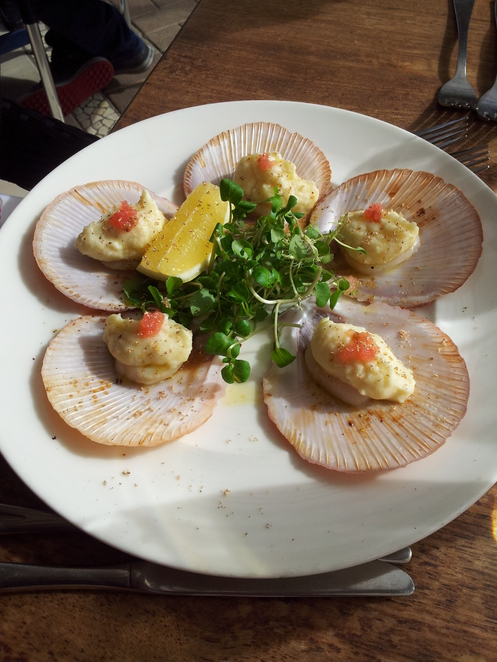 boat shed,the boatshed,scallops,entree at the boatshed