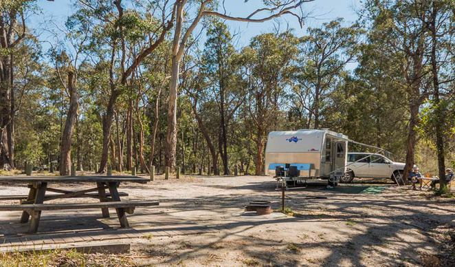 Photo of Boonoo Boonoo's Cypress Pine Campground courtersy of NSW National Parks and Wildlife Service