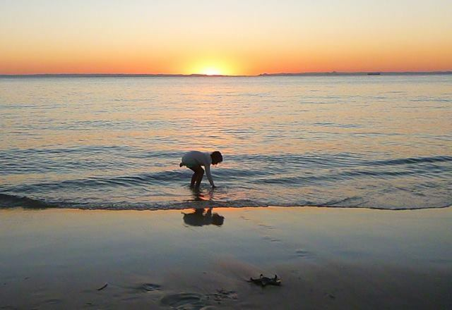 Rescuing starfish on the beach at Bulwer at sunset