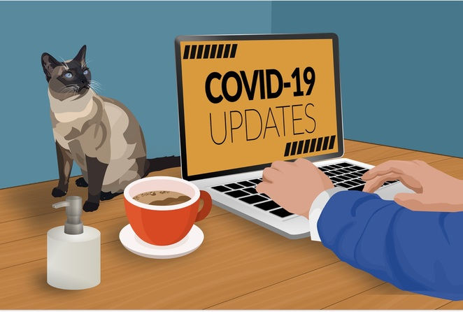 covid-19, work from home, social isolation