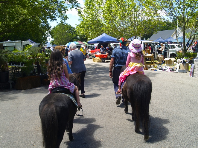 Evandale market, Launceston, best things to do in Launceston, Tasmania
