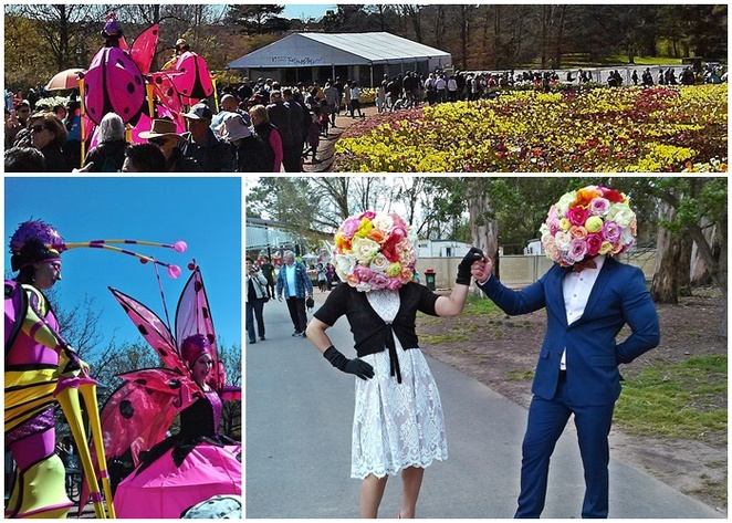 floriade, canberra, ACT, 2018, 2019, 2020, things to see, roving entertainers, stilt walkers, spring, flower festival, whats on, program, shows, entertainment, kids, children, art, sculpture,