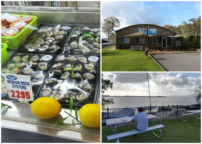 holberts oyster farm, oysters, seafood, prawns, salamander bay, NSW, port stephens, things to do in port stephens, things to do in salamander bay, oyster farms, best oysters,