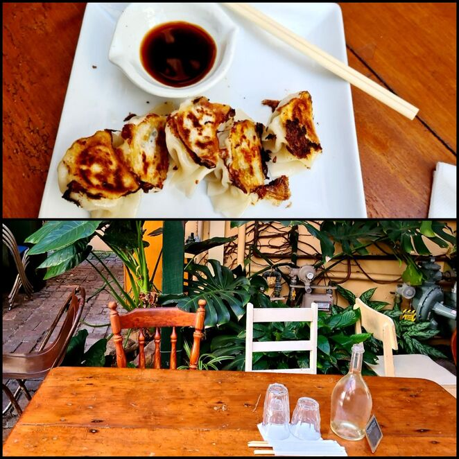 Japanese, restaurant, lunch, dinner, courtyard, gyoza, fresh, family, quirky, authentic, Newcastle