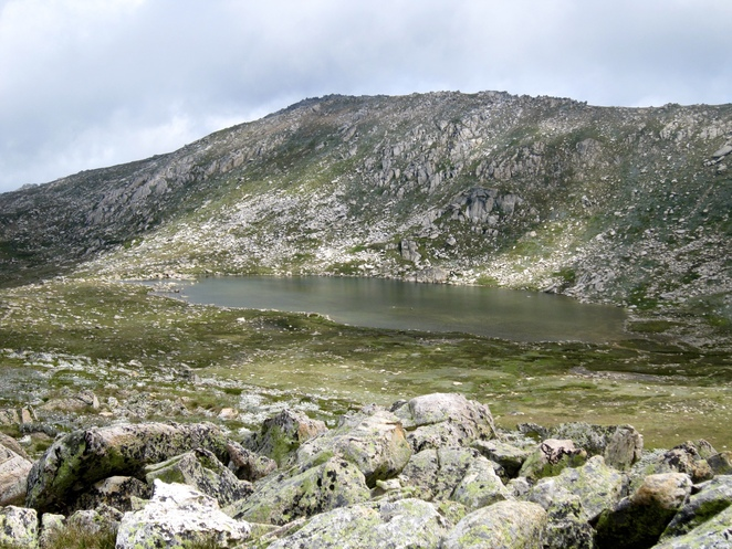 Mt Kosciuszko, hikes near Canberra, Snowy Mountains, bushwalking, seven summits, day trips from Canberra, National Parks near Canberra