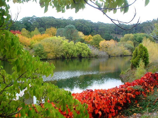 Where Are The Best Gardens In The Adelaide Hills Adelaide