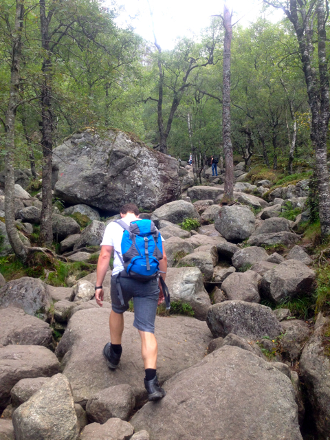 preikestolen, path, rocks, hike, nature, fitness