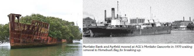 ss Aryfield