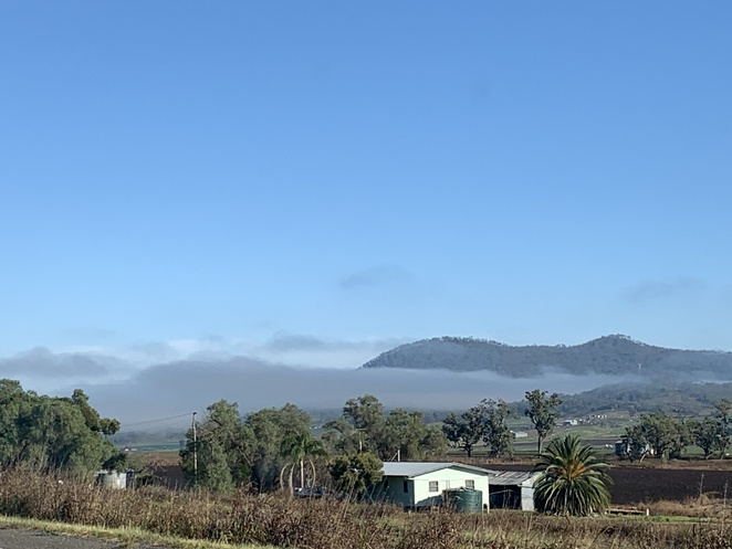 The Steamers Hike, The Steamers, Emu Vale, Emu Creek Road, Old Mill Road, Yangan Township in Qld, Warwick, Stern Lookout, Happy wanderer (Hardenbergia violacea), The Steamers: Prow Funnel Mast Stern, Wildlife, Mount Cordeaux, Mount Mitchell, Cunningham Gap,