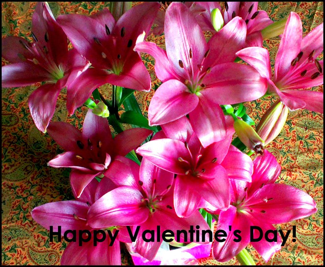 valentines day, flowers, love, romance