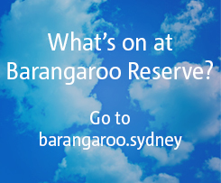 Barangaroo Reserve, The Rocks Sydney, Things to do in Sydney, Outdoor picnic spots in Sydney, Barangaroo Reserves first birthday party, Hickson Road Sydney, Sculpture at Barangaroo, Free events in Sydney, Things to do in August, kid friendly, kids, family, outdoor, outdoor celebrations
