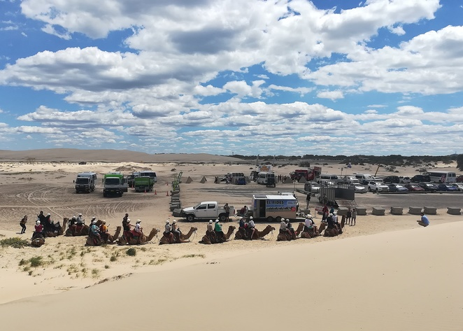 birubi beach, anna bay, camel rides, port stephens, things to do, tourist attractions, stockton beach, quad bikes, sand boarding, things to do, road trip from sydney, largest sand dunes,