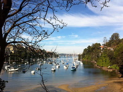 Stunning water views from Cremorne Reserve