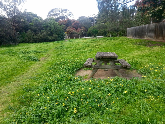 Cuthbertson Reserve, Ocean Grove, Bellarine, Picnic table