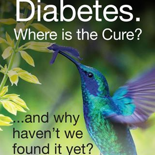 diabetes cure research