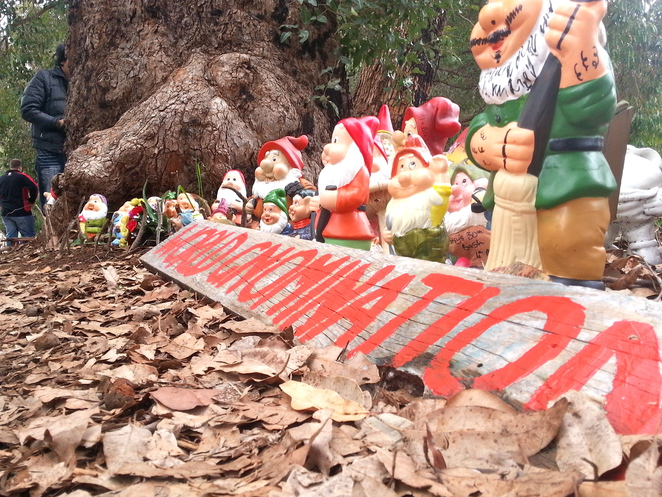 Gnomesville, Garden, Gnome, Bunbury, Southwest, Ferguson Valley, Donnybrook, Tourist, South, West, Puns