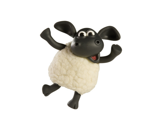 Meet Timmy the Sheep