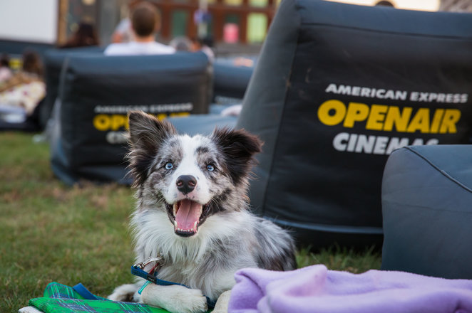 outdoor movies riverbank open air