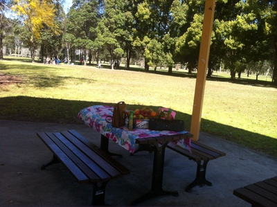 The beautiful picnic area