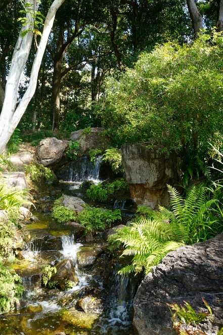 The waterfall in the Japanese garden