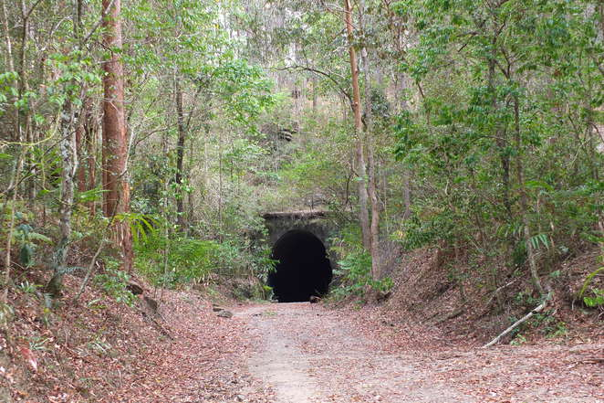 Tunnel Track, Dularcha National Park, bundu bashing, heritage-listed tunnel track, 93.5 metres long, Beech Road, six kilometres return, Mooloolah, walkers, mountain bike riders, horses, torch, water