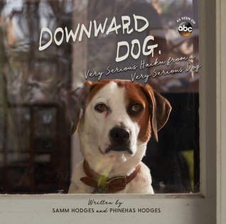 Downward Dog, haiku, poetry, books about animals, Downward Dog sitcom, sitcoms about animals