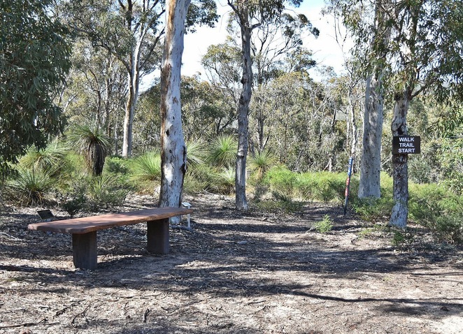 hiking, picnic, family friendly, day trip, Perth Hills, wildflowers