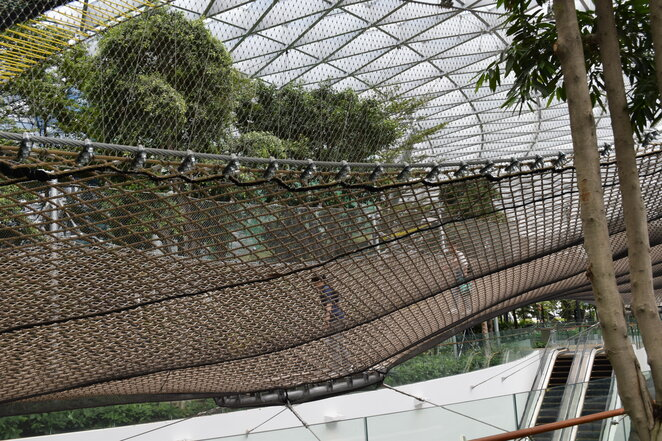 Jewel, nets, changi airport, playground, canopy park