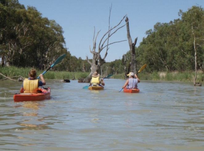 Kayak along the Mighty Murray River
