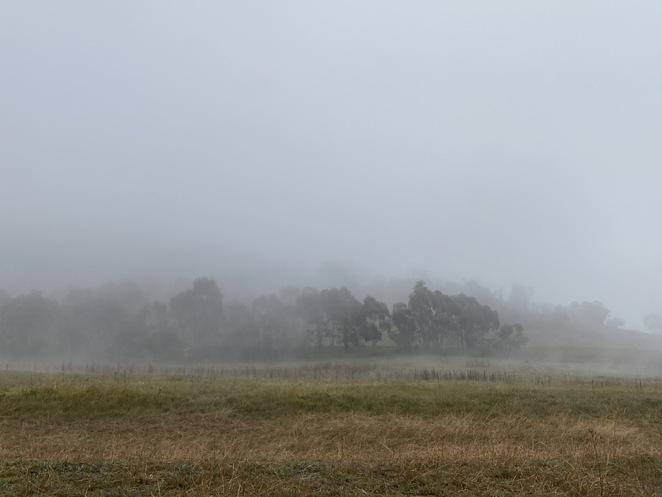 Late Winter in Canberra