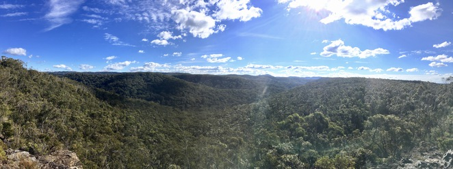 Lookout along Linden Ridge trail, Jade Jackson Photography, bushwalk, blue mountains bushwalk, 180 degree view, panorama view blue mountains