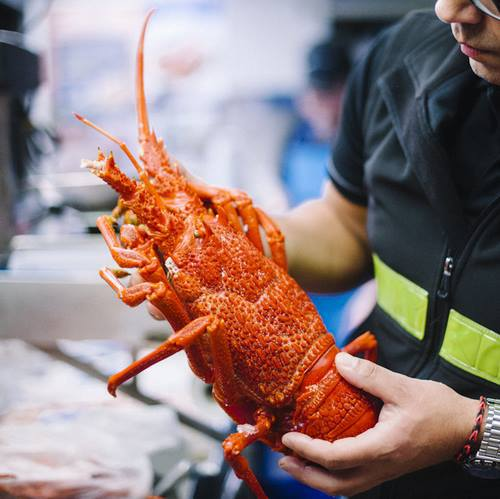 melbourne seafood market,best melbourne seafood market,top melbourne seafood market,melbourne fishmonger,best melbourne fishmonger,top melbourne fishmonger,melbourne fresh fish,melbourne cheap fish,melbourne crabs,footscray seafood