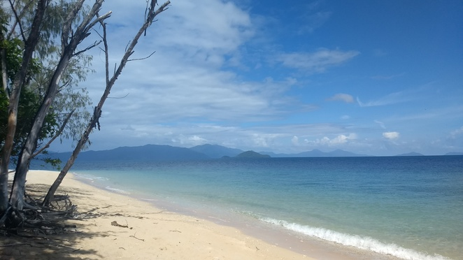 Normanby National Park Island, Frankland Island, National Parks in Cairns, Frankland Islands reef and river cruises, things to do near Cairns