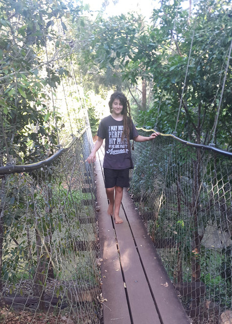 Lloyd's Suspension Bridge, Yungaburra