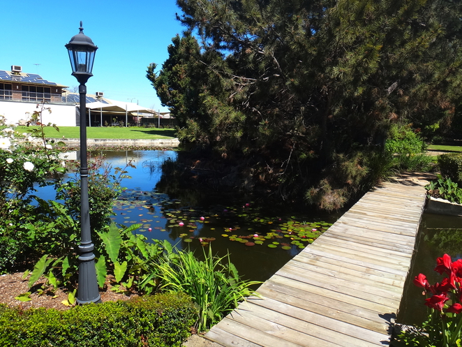 ramons, willow pond, canning vale, lunch, children, pyramid, chess, dining, dinner, japanese gardens, memorabilia, ramon lawrence