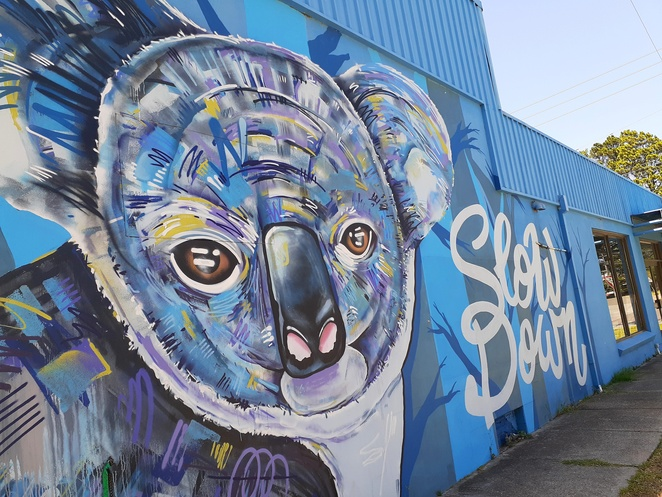 Rhys Fabris, slow down, koala, anna bay, street art, port stephens council, australia, kookaburra, alley, NSW,