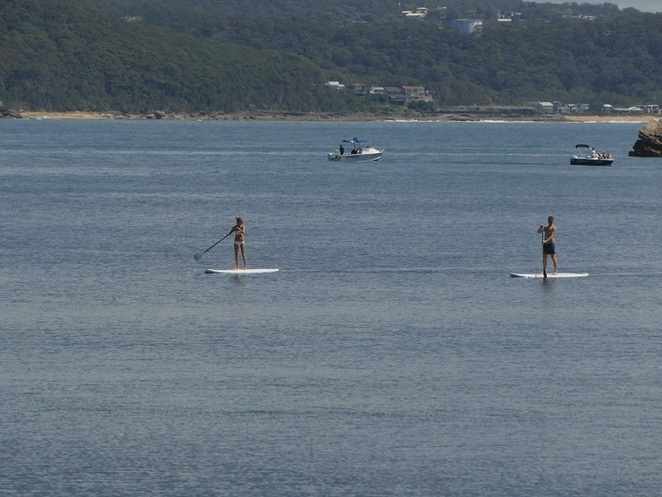 SUP Pittwater Northern Beaches Sydney NSW