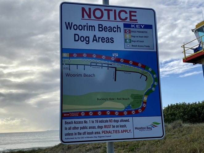 Off-leash areas of beach are well signposted on Bribie Island