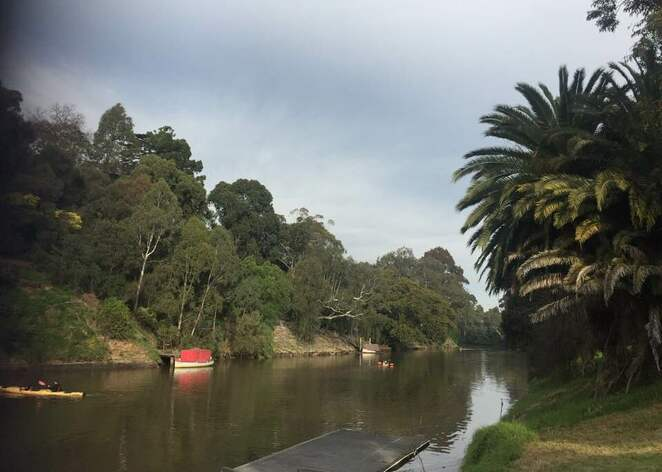 Capital City Trail, bike path, fitness, walking path, yarra bend, family walks