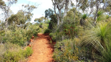 Eagle View Walk Trail, John Forrest National Park, hiking trail