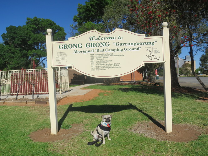 grong grong motor inn, grong grong, sydney, melbourne, brisbane, small town, new south wales, farming village, close community, newell highway, narrandera, west wyalong, dog friendly, motel, hotel, bed and breakfast, accomodation, the anchor restaurant, restaurant, coffee, free wifi