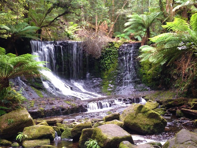 horseshoe falls Mt Field National Park