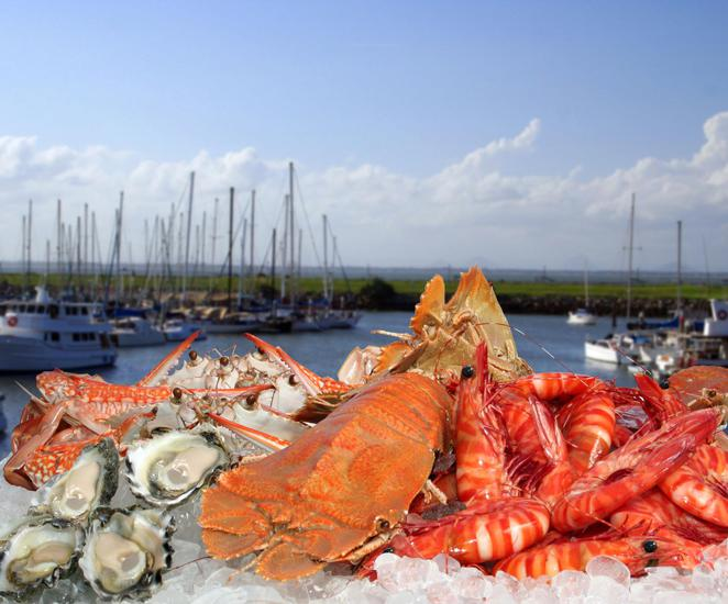 Photo courtesy of Morgans Seafood