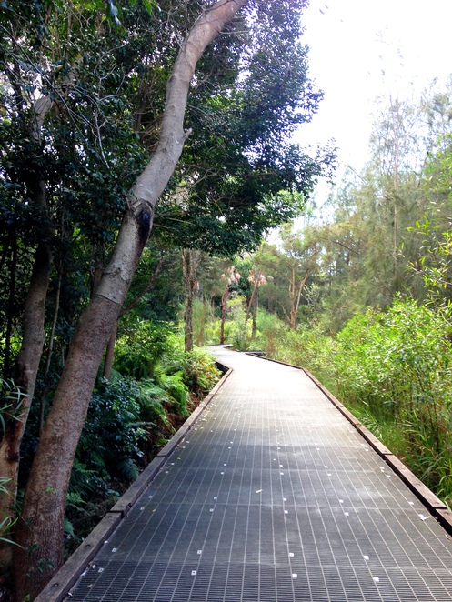 Narrabeen Lagoon Bush Trail, Narrabeen Lagoon Multi-use Trail, Narrabeen Lagoon Trail, Narrabeen Lakes Walking Trail, Northern Beaches Trail